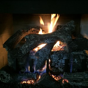 GAS LOG--FIRESIDE GRAND 24 B