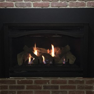 Heat & Glo Supreme Gas Insert